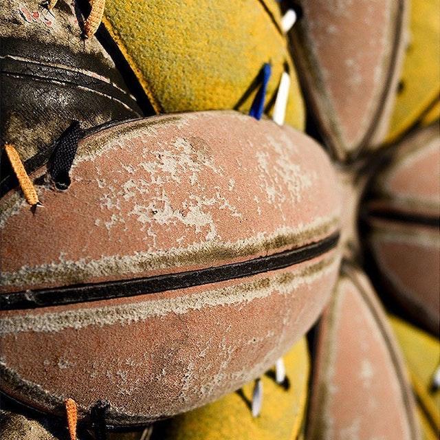 Basketball Bloom (Suede Wilson) (Detail)