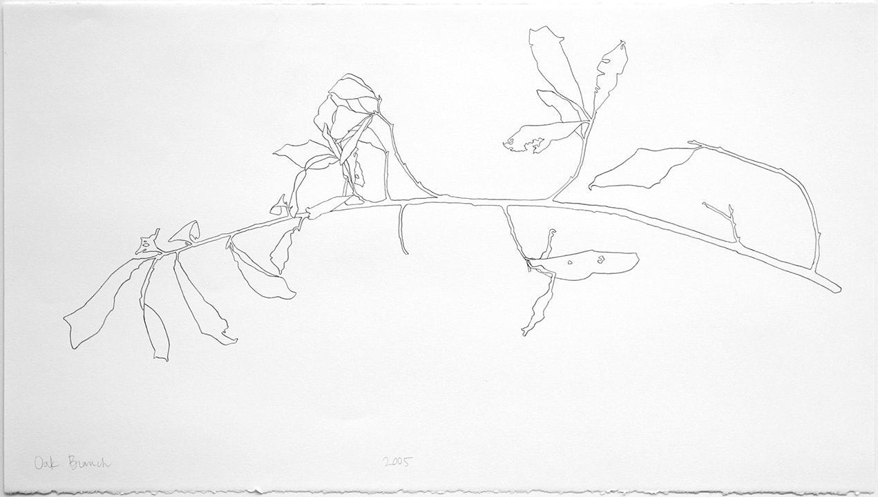 2005 Oak Branch - 7