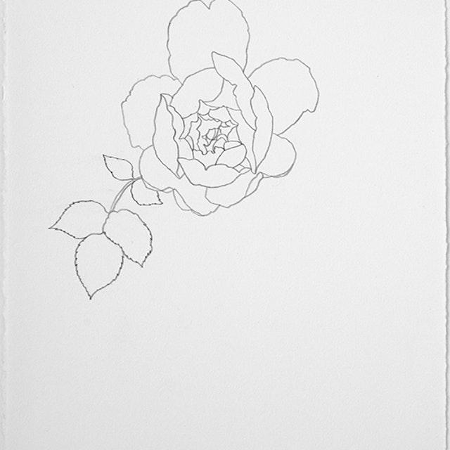 04-26-2021 Desdemona Rose