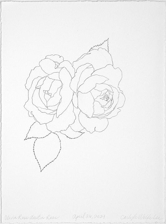04 26 2021 Olivia Rose Austin Rose