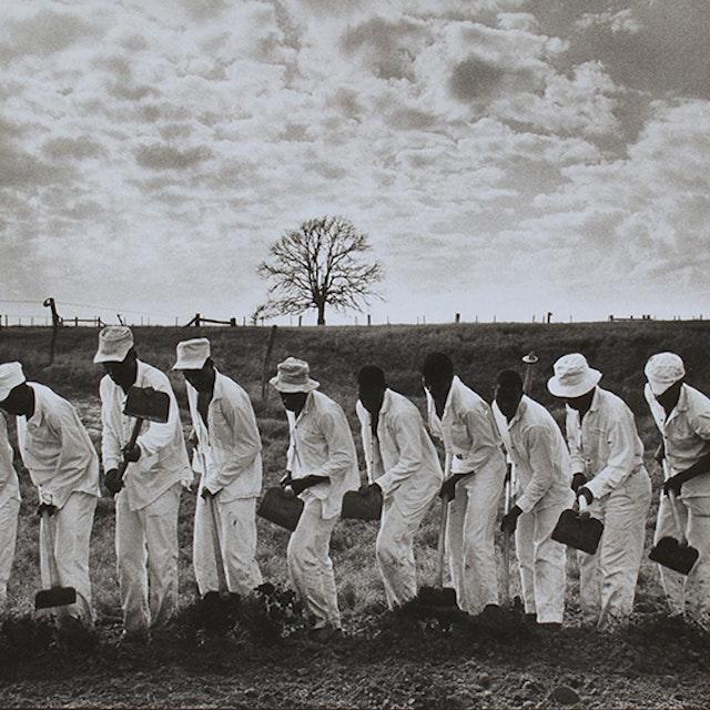 The Line, Ferguson Prison, Texas