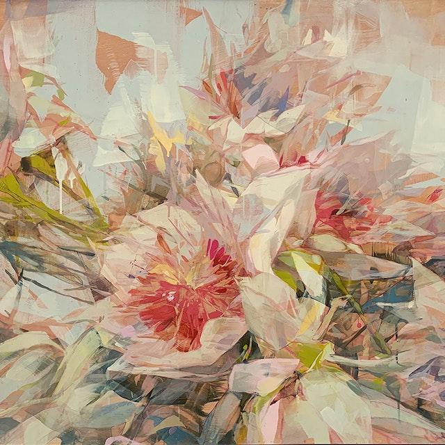 Blush Protea