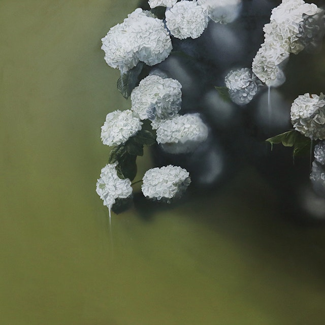 Untitled (Green with White Hydrangeas)