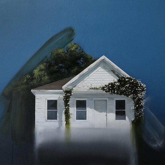 Untitled (White House /Roses)