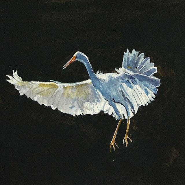 Untitled (Egret)