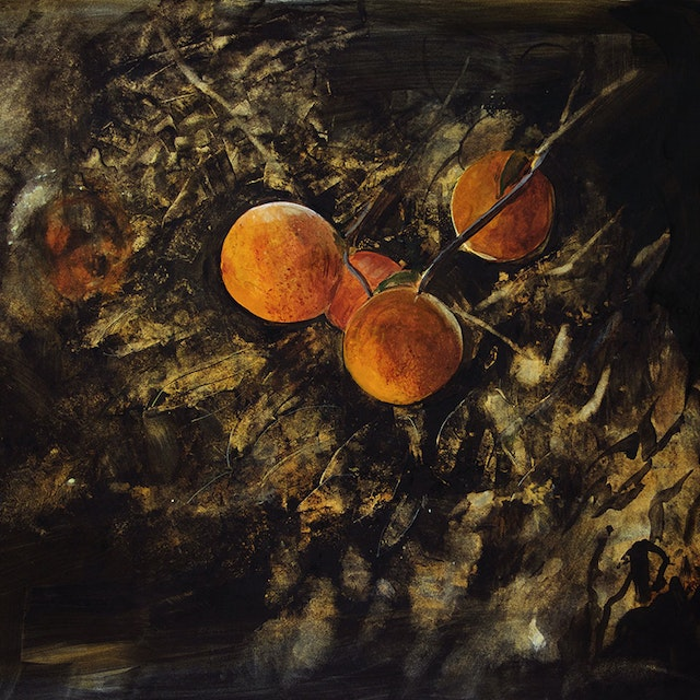 Untitled (Oranges)