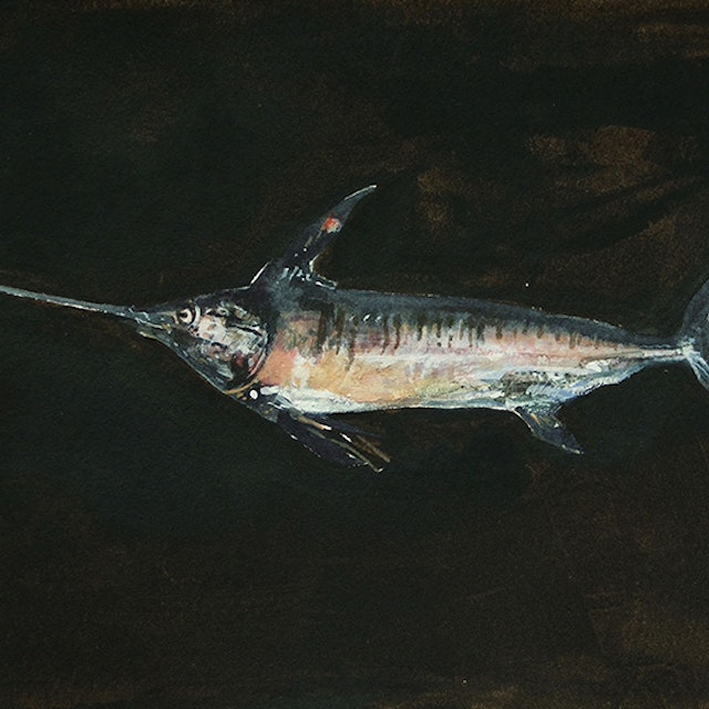 Untitled (Swordfish)