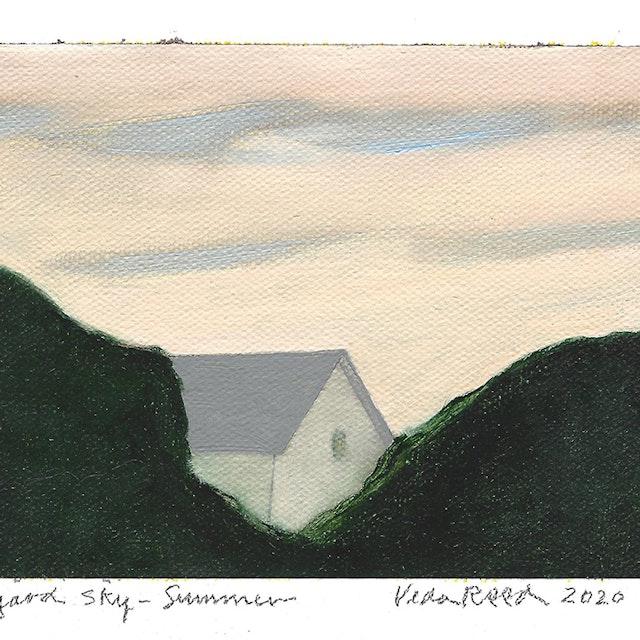 Backyard Sky - Summer