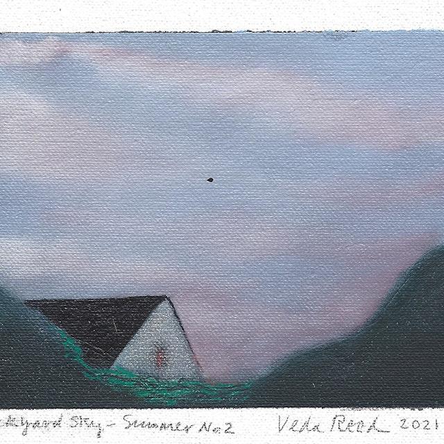 Backyard Sky - Summer 2