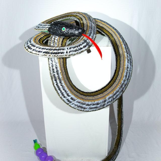 Large Black Snake