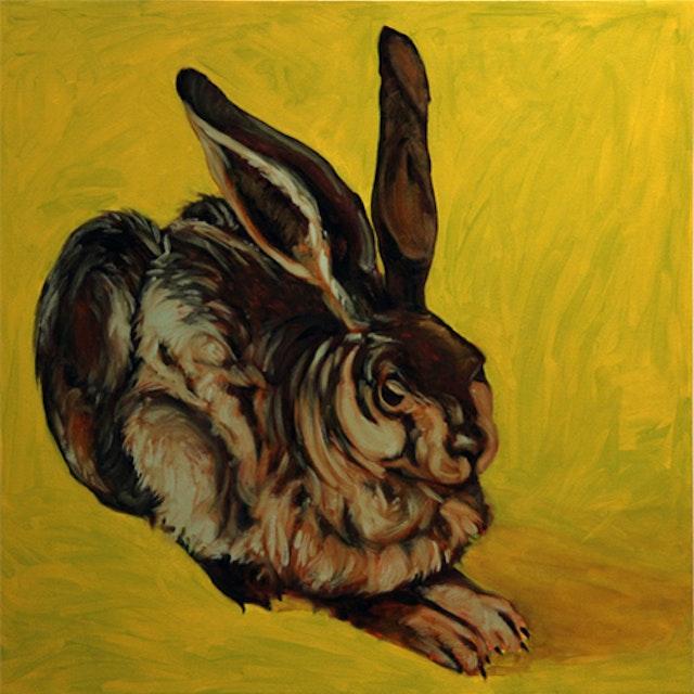 Cm Hare