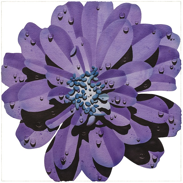Purple Flower with Blue Center