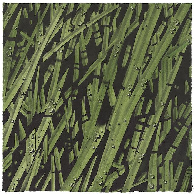 Gd spring grasses 10