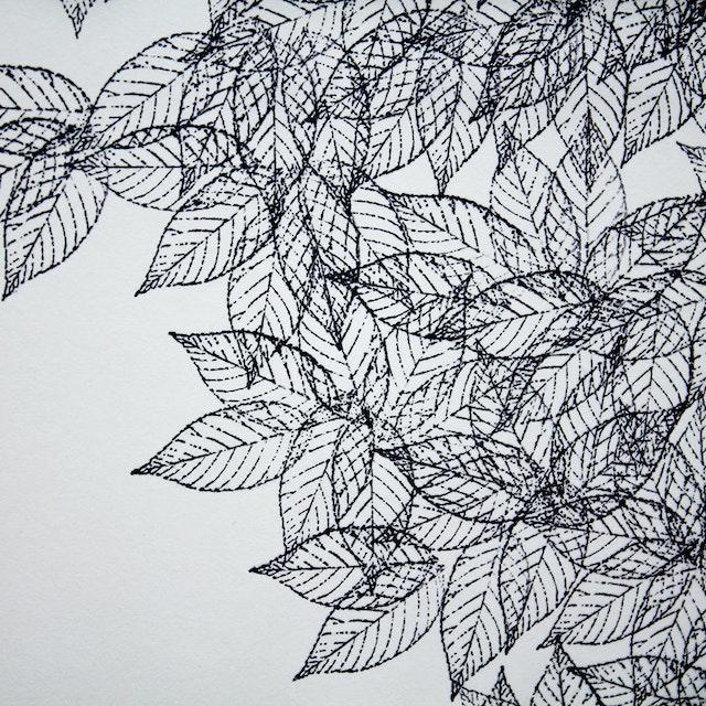Js Black Walnut Detail 1