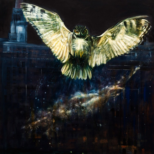 Mc Owl With Chicago